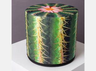 zaismingo dizaino spalvingas pufas su kaktuso rastais