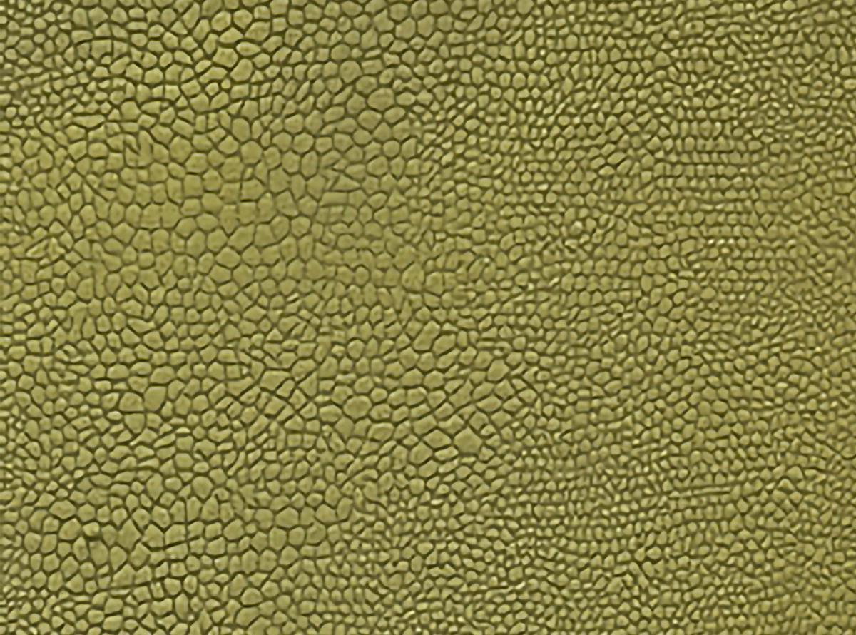 Žalios spalvos švelnus raštuotas gobelenas