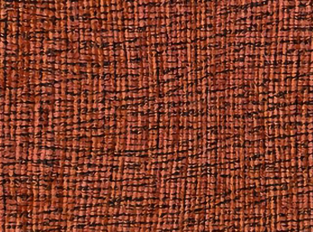 Raudonai oranžinės spalvos raštuotas gobelenas